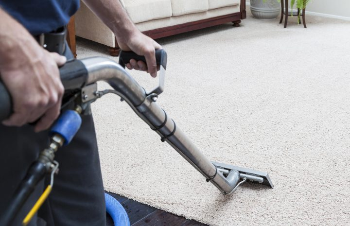 Top 15 Best Carpet Cleaners For Pets Reviews 2020
